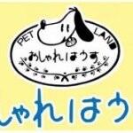 姫路おしゃれはうす/ミルク